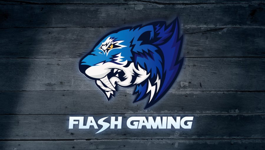 Flash Gaming ends partnership with Vici Gaming | News