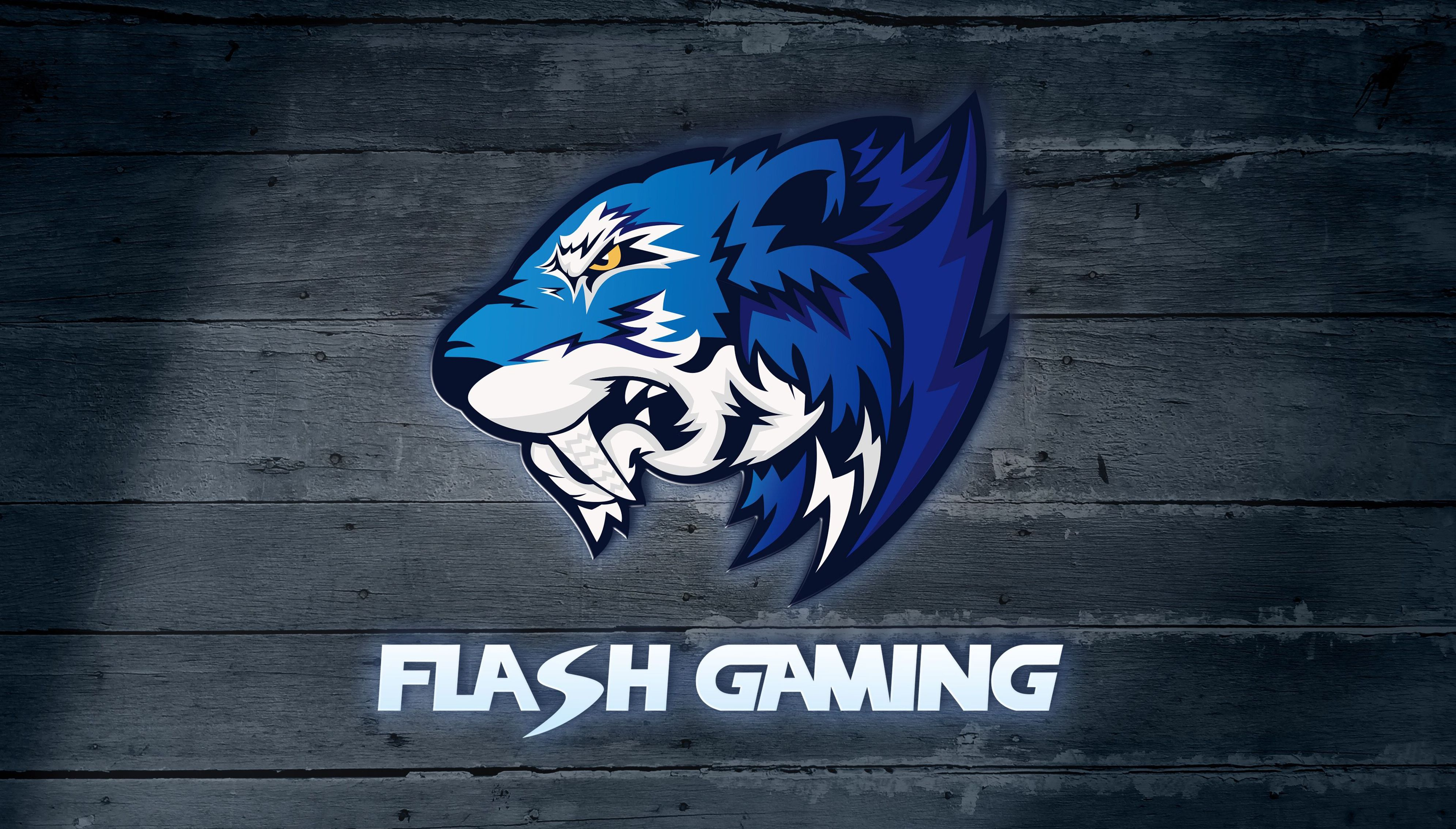 Flash Gaming ends partnership with Vici Gaming   News